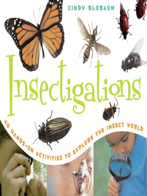 cover image of Insectigations