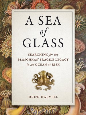 cover image of A Sea of Glass