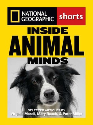 cover image of Inside Animal Minds