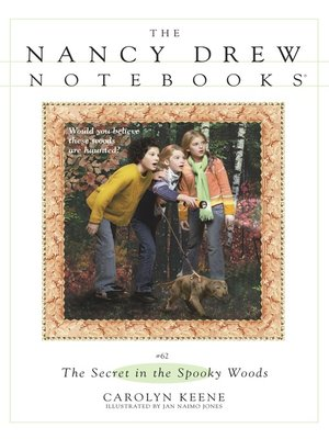 cover image of The Secret in the Spooky Woods