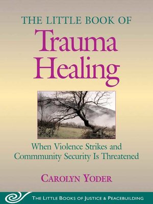 cover image of Little Book of Trauma Healing