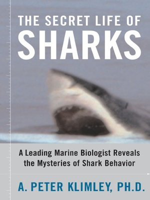 cover image of The Secret Life of Sharks