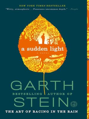 Cover image for A Sudden Light