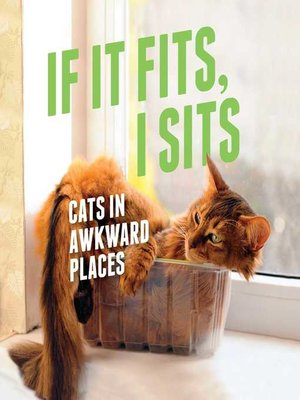 cover image of If It Fits, I Sits