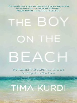 cover image of The Boy on the Beach