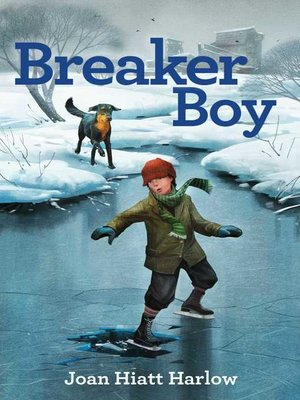cover image of Breaker Boy