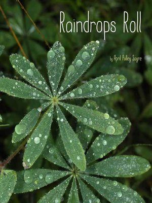 cover image of Raindrops Roll