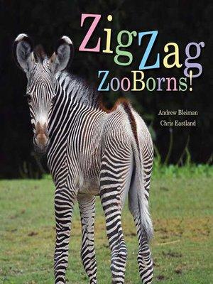 cover image of ZigZag ZooBorns!