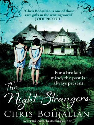 cover image of The Night Strangers