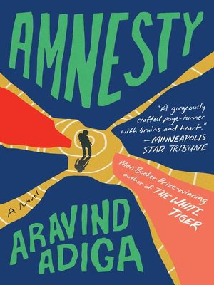 cover image of Amnesty