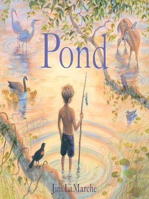 cover image of Pond
