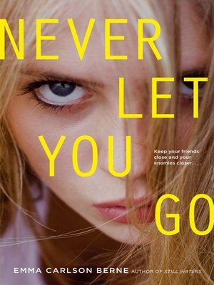 cover image of Never Let You Go