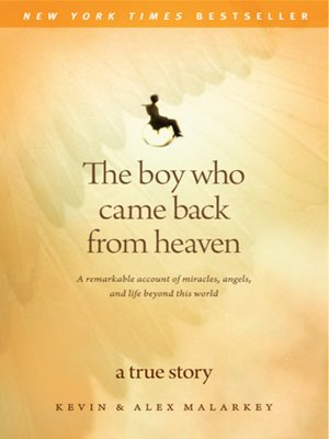 cover image of The Boy Who Came Back From Heaven