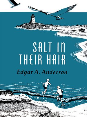 cover image of Salt in Their Hair