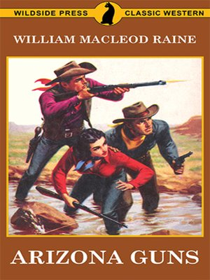 cover image of Arizona Guns