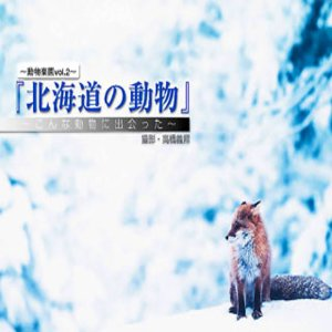 cover image of Wild Animal in Hokkaido