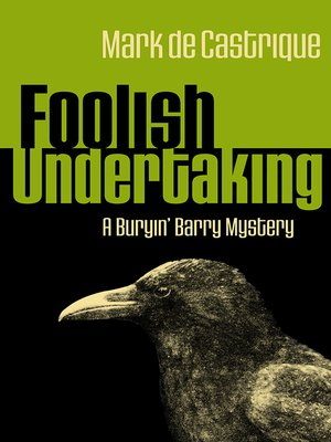 cover image of Foolish Undertaking