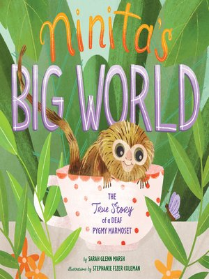 cover image of Ninita's Big World