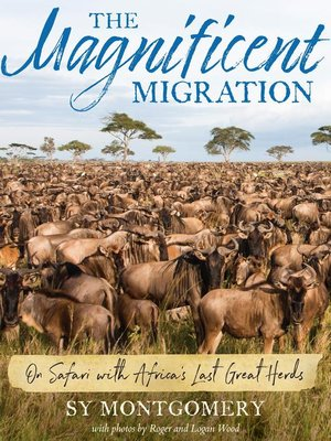 cover image of The Magnificent Migration