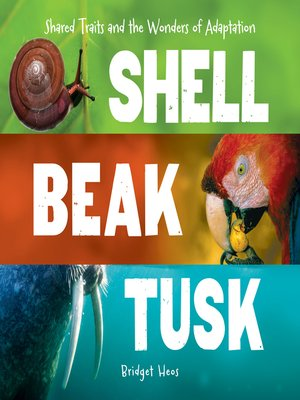 cover image of Shell, Beak, Tusk