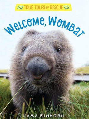 cover image of Welcome, Wombat