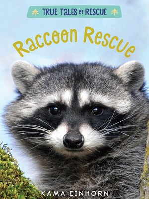 cover image of Raccoon Rescue