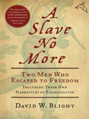 cover image of A Slave No More