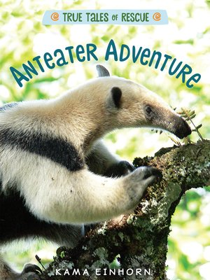 cover image of Anteater Adventure