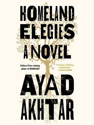 cover image of Homeland Elegies