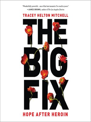 cover image of The Big Fix