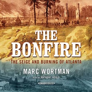 cover image of The Bonfire