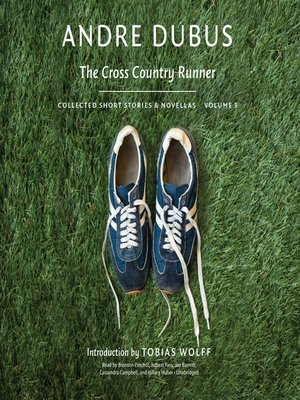cover image of The Cross Country Runner