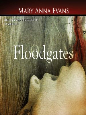 cover image of Floodgates