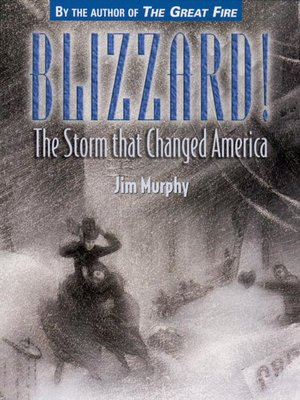 cover image of Blizzard!