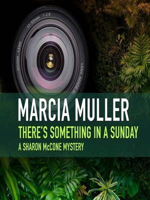 cover image of There's Something in a Sunday