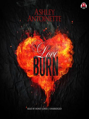 cover image of Love Burn