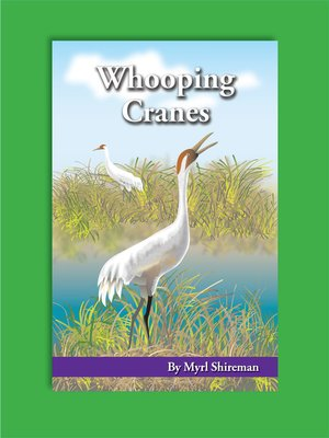 cover image of Whooping Cranes