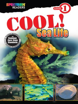 cover image of Cool! Sea Life