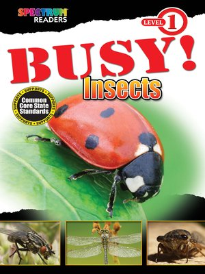 cover image of BUSY! Insects