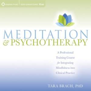 cover image of Meditation and Psychotherapy