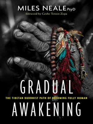 cover image of Gradual Awakening