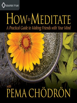 cover image of How to Meditate With Pema Chodron