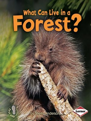 cover image of What Can Live in a Forest?
