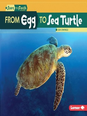 cover image of From Egg to Sea Turtle