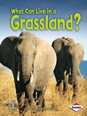cover image of What Can Live in a Grassland?