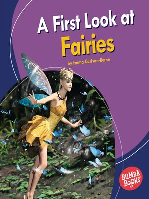 cover image of A First Look at Fairies