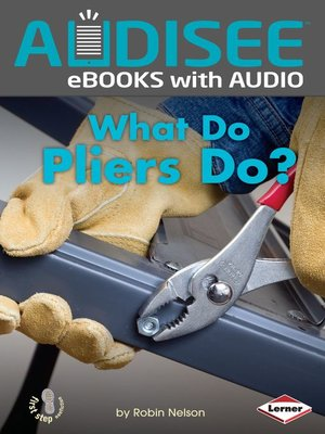 cover image of What Do Pliers Do?