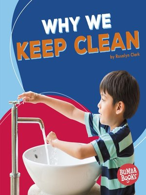 cover image of Why We Keep Clean