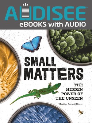 cover image of Small Matters