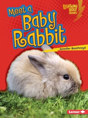 cover image of Meet a Baby Rabbit